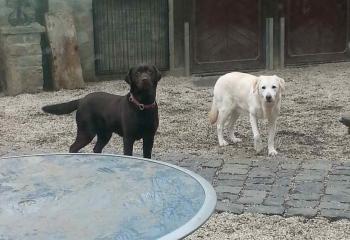Klara mit Freundin Tine